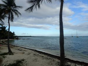Lagune Saint Francois