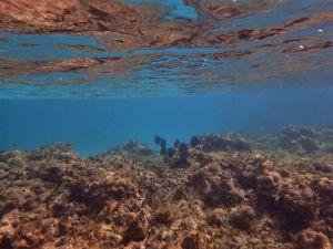 guada pmt reserve