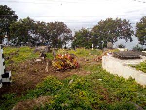 cimetière envahi
