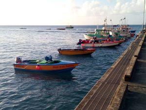 jan goyave boat